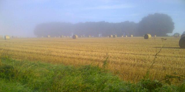 autumn pic 1